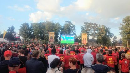 Opvolger voor 'Peltrovski': EK voetbal 2020 opnieuw op groot scherm
