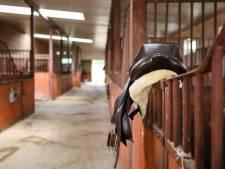 In week voor duizenden euro's aan paardenzadels gestolen: 'Dit gebeurt jaarlijks'