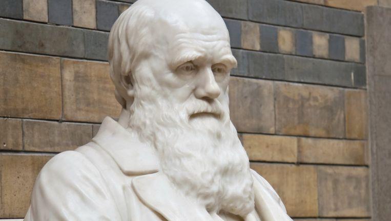 Beeld van Charles Darwin. ©Thinkstock Beeld