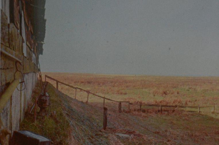 De stal in het Verdronken Land tijdens eb