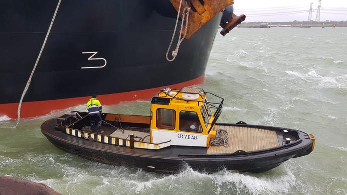 Roeiers aan het werk in de Rotterdamse haven.