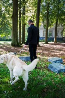 Per ongeluk of respectloos? Honden plassen over herdenkingsstenen verzetsstrijders in Apeldoorn