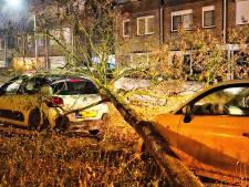 Stormschade na flinke windstoten, vertraging treinen tussen Eindhoven en Weert