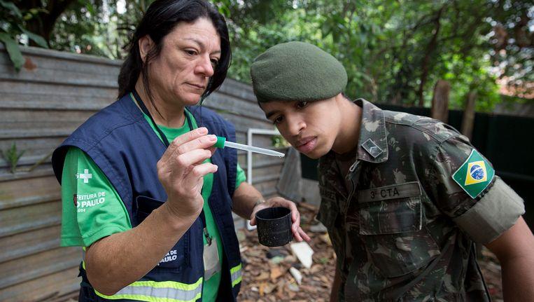 Een gezondheidsmedewerker in Sao Paulo laat een larve van een mug met het zika-virus zien. Beeld ap