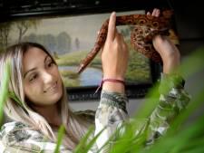 Droom van beschermvrouw reptielen Sterrin (25) uit Rijssen komt uit
