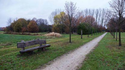 Nieuw samentuinproject zoekt groene vingers
