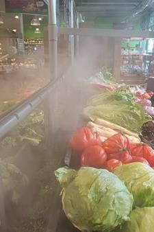 Mist houdt groente langer fris bij Ekoplaza in Eindhoven