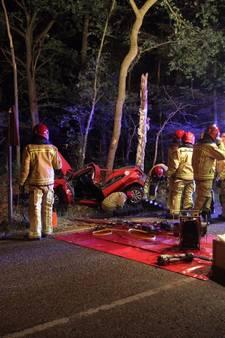 Automobilist zwaargewond na botsing tegen boom in De Rips