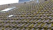 Ben je het mos op je dak beu? Zo verwijder je het zelf