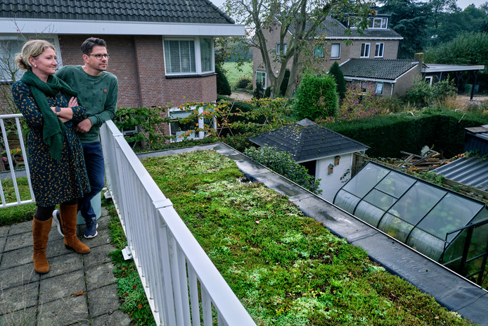 Marieke en Serge Vavier zijn blij met het groene dak op hun woning in Mijnsheerenland.
