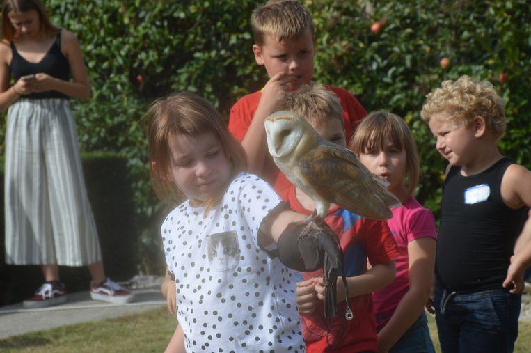 De kinderen zijn gefascineerd door de roofvogels.