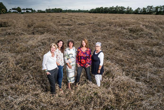 V.l.n.r. Dees van den Berg, Marrit Verheijen, Marianne de Vette, Renate Diks en Eva Schrijver.