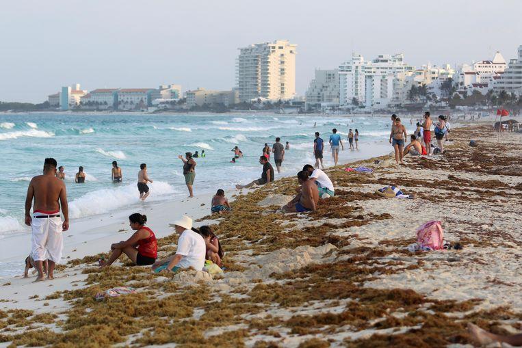 Het strand van Cancun wordt bedekt met het stinkende zeewier.