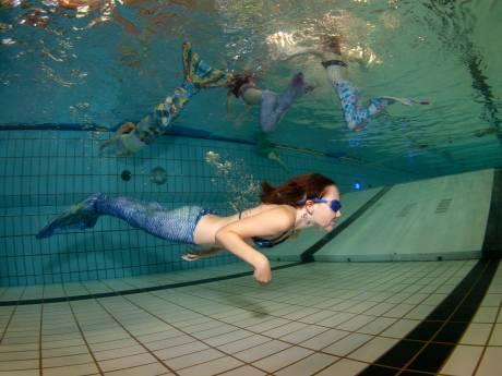Jonge zeemeerminnen voelen zich in Brummen als een vis in het water