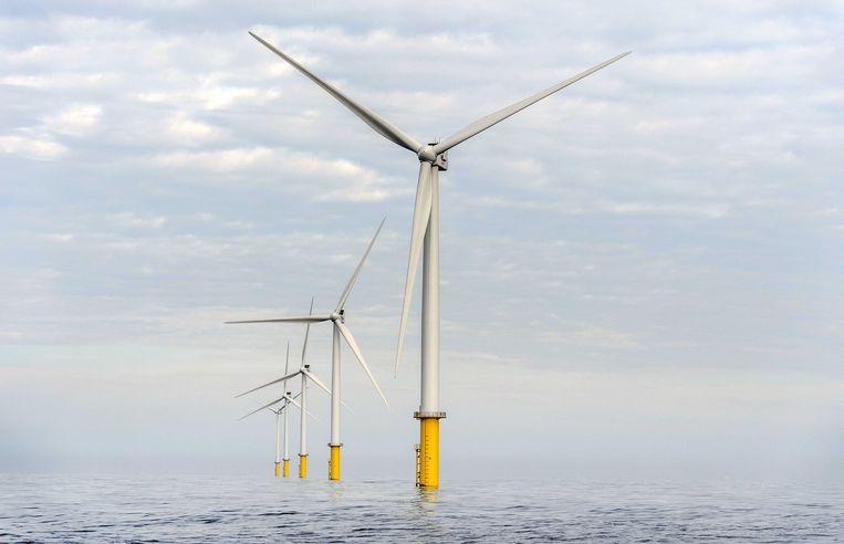 Eneco verdiende afgelopen jaar meer met zon- en windparken. Beeld ANP