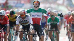 Viviani weer aan het feest in Vuelta: Italiaan wint massasprint in Fermoselle, seizoenszege nummer 60 voor Quick.Step