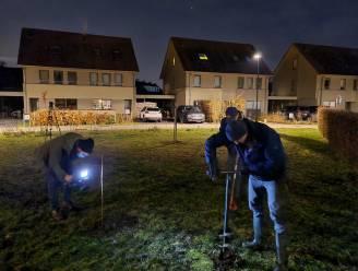 """Milieuorganisatie plant in holst van de nacht 'illegaal' bosje aan in Mariakerke: """"Met enige creativiteit vind je wel nog ruimte voor bomen"""""""