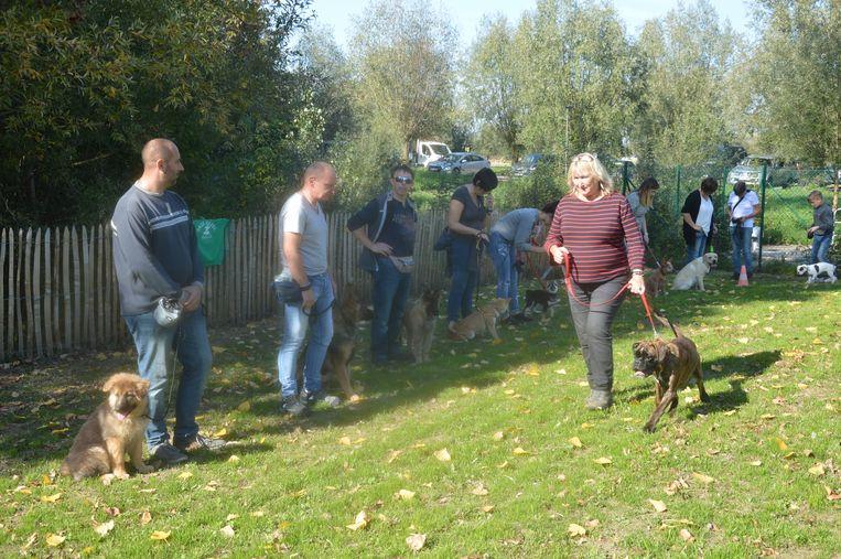 Hondenclub 'Onze gezel' gaf een demonstratie.