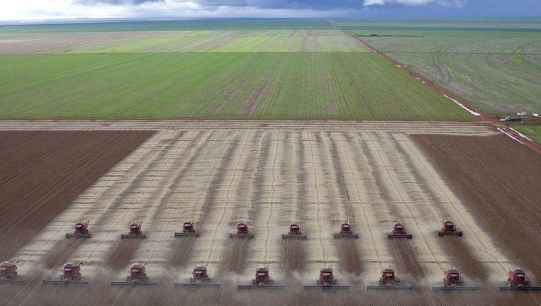 Beeld van de oogst van sojabonen in Brazilië.