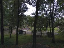 Jonge vrijwilligers kinderboerderij zijn Brummense Bikkels