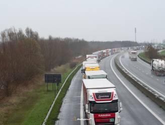 """Al hele dag brexitfile van trucks op E40 aan Franse grens, """"muur van vrachtwagens"""" tot voorbij Adinkerke"""