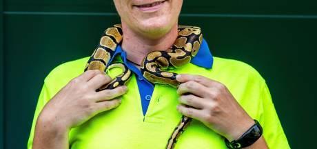 Ilona (31) ving de python die vannacht door De Bilt glibberde: 'Ik vind 'm erg lief'