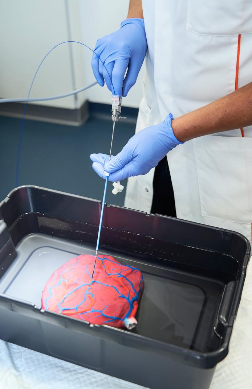 Een op ware grootte nagemaakte placenta met ingetekende bloedvaten, zodat het operatieteam waarheidsgetrouw kan oefenen.