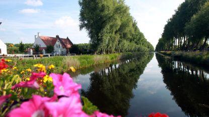 Historisch uitzicht Damse Vaart wordt vereeuwigd dankzij nieuw natuurbeheerplan