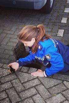 Liza redt negen eendenkuikens uit rioolput in Gorinchem