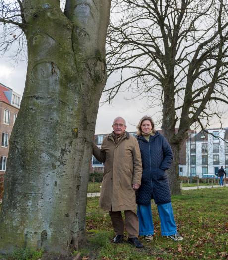 Gemeente Waalre wijst verzoek om naam Hezemansplantsoen op Brabantia-terrein af