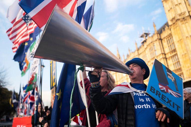 Remain-campagnevoerder Steve Bray richt zijn blik op het parlement Beeld EPA