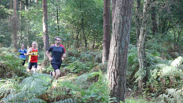 Trailrunners op een bospad.