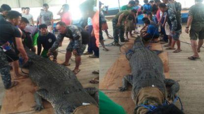 Reusachtige krokodil gevangen op de Filipijnen, nadat visser werd doodgebeten