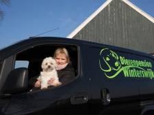 Buurt rond dierenpension Corle bang voor blaffende honden: 'Waarom wordt er niks gedaan met onze bezwaren?'