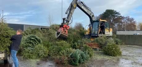 Rijssens gospelkoor TODA zamelt 600 kerstbomen in