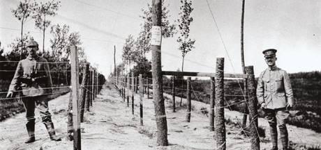 Krokussen langs de hele grens gaan Dodendraad uit '14-'18 tot leven brengen