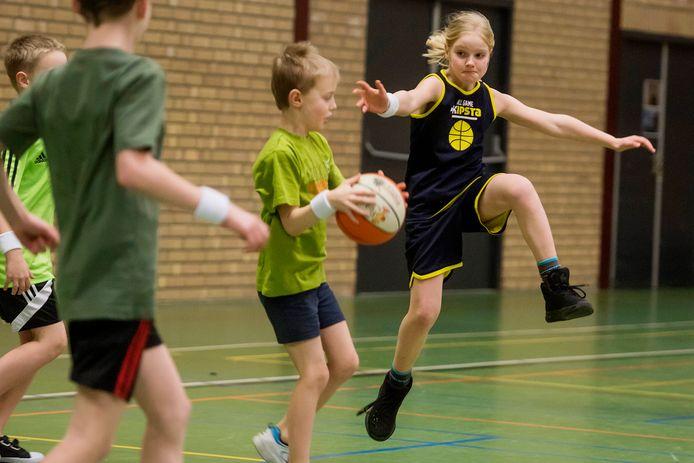 Sporthal in Vlijmen gaat in etappes op de schop.