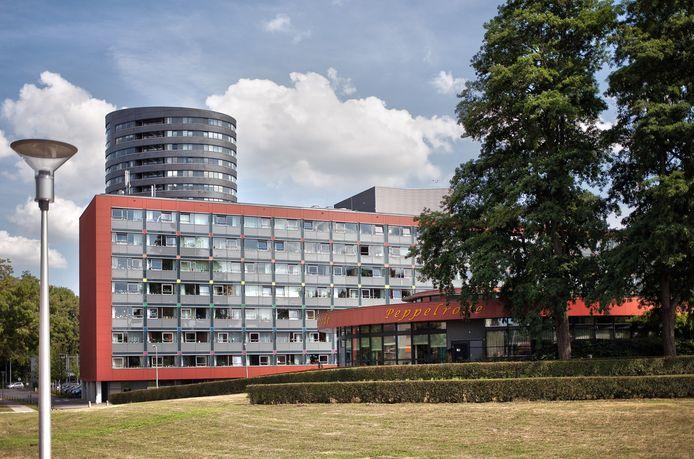 Peppelrode in Eindhoven (archieffoto).