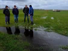 Boer zorgt voor 'plasdras' in Binnenveld bij Achterberg