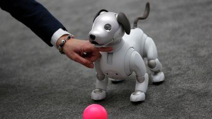 Schattigste gadget op CES: Sony's robothondje Aibo