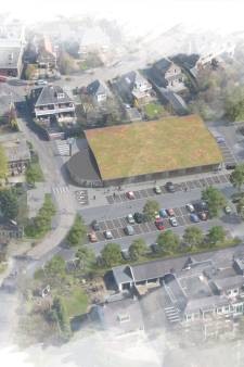 Driebergse supermarkt wil bomen laten kappen, bewoners zijn fel tegen