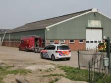 Persoon gewond na val door dak op agrarisch bedrijf Culemborg