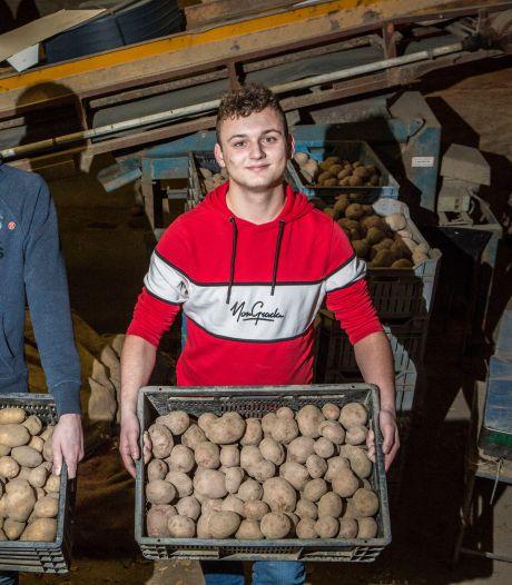 Verse piepers op je stoep: jonge ondernemers Bas en Mels (19) vinden gat in de markt