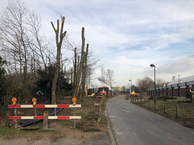 Een kaal zicht rond de sporthal van Zaventem. Verschillende bomen werden gekapt (rechts), andere werden gesnoeid (links).