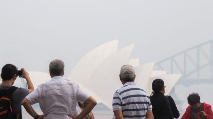 Toeristische sector Australië vreest miljarden verlies door bosbranden