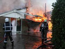 22 kalfjes overleden door brand in stal Friesland