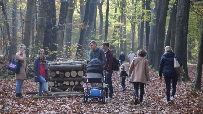 """Meetjeslandse bossen elk weekend overvol: """"Niet te veel natuurliefhebbers, wel te weinig natuur"""""""