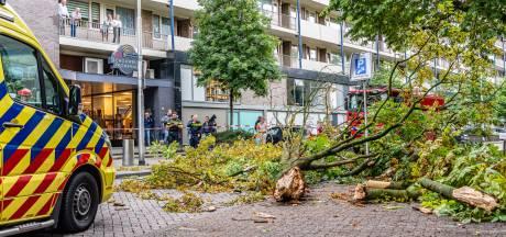 Oudere vrouw gewond door vallende boomtak in centrum van Tilburg