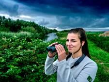 Boswachter Vera Willemsen: 'Dit is het mooiste, onontdekte stukje Hoeksche natuur'