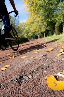 Ergernis over fietspad langs Rijkerswoerdsestraat